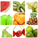De collage van vruchten Stock Afbeelding