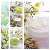 De collage van Wellness Royalty-vrije Stock Afbeeldingen