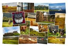 De Collagebeelden van Montreal Stock Foto's