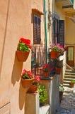 De comfortabele muren van huizen met potten van bloemen Royalty-vrije Stock Fotografie