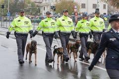 De commiezen met de diensthonden marcheren op militaire paragraaf stock foto