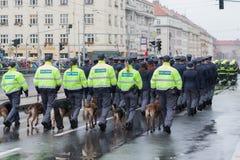 De commiezen met de diensthonden marcheren op militaire paragraaf stock afbeeldingen