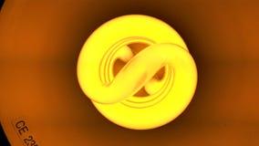 De compacte Bol van het Neonlicht royalty-vrije stock afbeelding