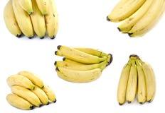 De compilatie van bananen Royalty-vrije Stock Afbeeldingen