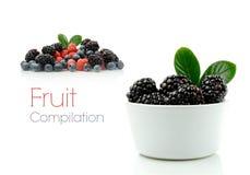 De Compilatie van het fruit stock afbeelding