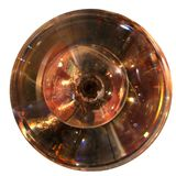 Concentrische Glasorganismen Royalty-vrije Stock Fotografie