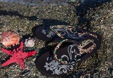 De concept-wipschakelaars van de de zomervakantie met overzeese ster en shells op het strand Stock Foto