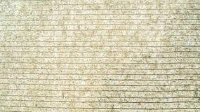 De concrete achtergrond van de cementbestrating Stock Fotografie