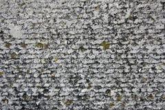 De concrete textuur van de asbestlei die met korstmos en mos, industrieel materieel natuurlijk cement, close-up wordt behandeld stock foto