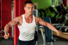 De concurrent van de lichaamsbouwgeschiktheid werkt in gymnastiek opheffende domoren uit Royalty-vrije Stock Afbeeldingen