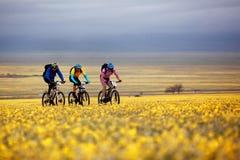 De concurrentie van de de bergfiets van het avontuur stock afbeeldingen