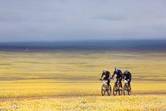 De concurrentie van de fietsandventure van de berg Stock Afbeelding