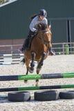 De concurrentie van het paard dwarsland tiener het springen boomboomstammen en sprongen meer dan vaten water en gekleurde bars stock foto's