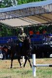 De concurrentie van paardruiters Royalty-vrije Stock Foto