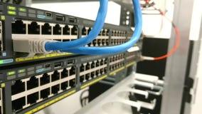 De connectiviteit van het Ethernetnetwerk Flardkoorden in een gegevensschakelaar die worden gestopt stock footage