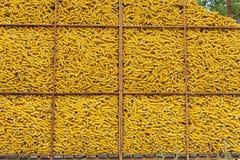 De container van het graan Stock Afbeeldingen