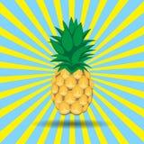 De contour abstract naadloos patroon van het ananasfruit op geel blauw die lijnenachtergrond uitstralen Royalty-vrije Stock Afbeelding