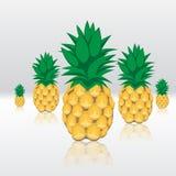 De contour abstract naadloos patroon van het ananassenfruit op grijze glanzende weerspiegelende achtergrond Stock Fotografie