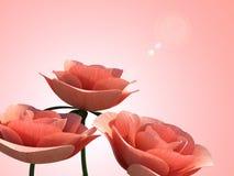 De Copyspacerozen betekent Romaanse Bloemblaadje en Flora Stock Foto