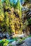 De Coquihalla-Rivier in Coquihalla-Canion Provinciaal Park en bij de dichtbijgelegen Hoop van Othello Tunnels in Brits Colombia C stock foto's