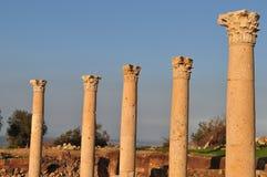 De Corinthische Kolommen van Pella Stock Fotografie
