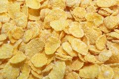 De cornflakes sluiten omhoog Stock Afbeelding