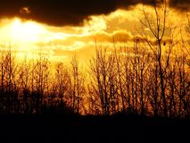 Or de coucher du soleil de crépuscule Photographie stock libre de droits