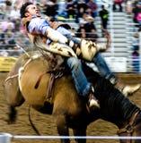 De cowboy van de rodeo stock fotografie