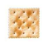 De Cracker van Saltine die op wit wordt geïsoleerdl Stock Foto