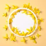 De creatieve die lay-out van gele bloemeninstallaties wordt gemaakt kijkt hierboven als bananen en rond gemaakte document kaartno royalty-vrije stock foto