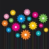 De creatieve kleurrijke achtergrond van het bloempatroon Royalty-vrije Stock Foto's