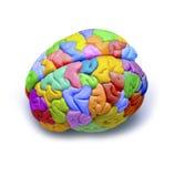 De Creativiteit van hersenen Royalty-vrije Stock Afbeelding