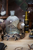 De cru toujours durée avec le python royal photo libre de droits