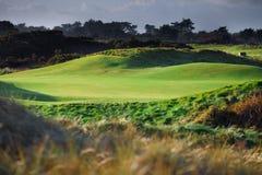 De cursus van het golf royalty-vrije stock foto