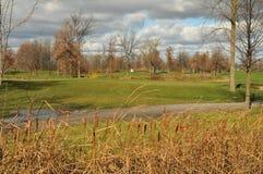 De cursus van het golf in daling Royalty-vrije Stock Foto's