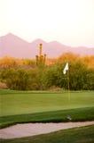 De cursus van het golf in de woestijn van Arizona Stock Foto's