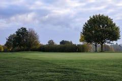 De Cursus van het golf in de Herfst stock afbeelding