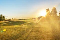 De cursus van het golf in het platteland Stock Afbeeldingen