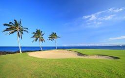 De Cursus van het Golf van Hawaï Royalty-vrije Stock Foto's