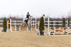 De cursus van de paardhindernis en parkour Royalty-vrije Stock Fotografie