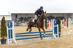 De cursus van de paardhindernis en parkour Stock Foto