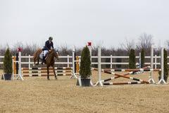 De cursus van de paardhindernis en parkour Stock Fotografie