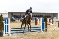 De cursus van de paardhindernis en parkour Stock Foto's