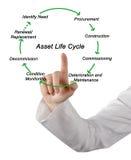 De Cyclus van het activaleven stock foto's