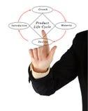 De Cyclus van het productleven Stock Fotografie