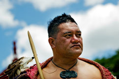 De Dag en het Festival van Waitangi - Nieuw Zeeland Officiële feestdag 2013 royalty-vrije stock foto's