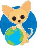 De Dag van de Aarde van Chihuahua Stock Afbeeldingen