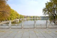 De dag van de herfst in park Stock Foto's