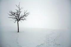 De dag van de koude winter in Beieren Stock Afbeelding