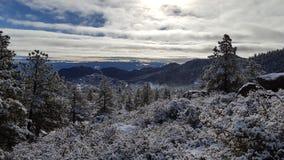 De dag van de pretsneeuw in de wintersprookjesland Royalty-vrije Stock Afbeeldingen